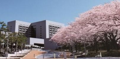 中央大学法学部